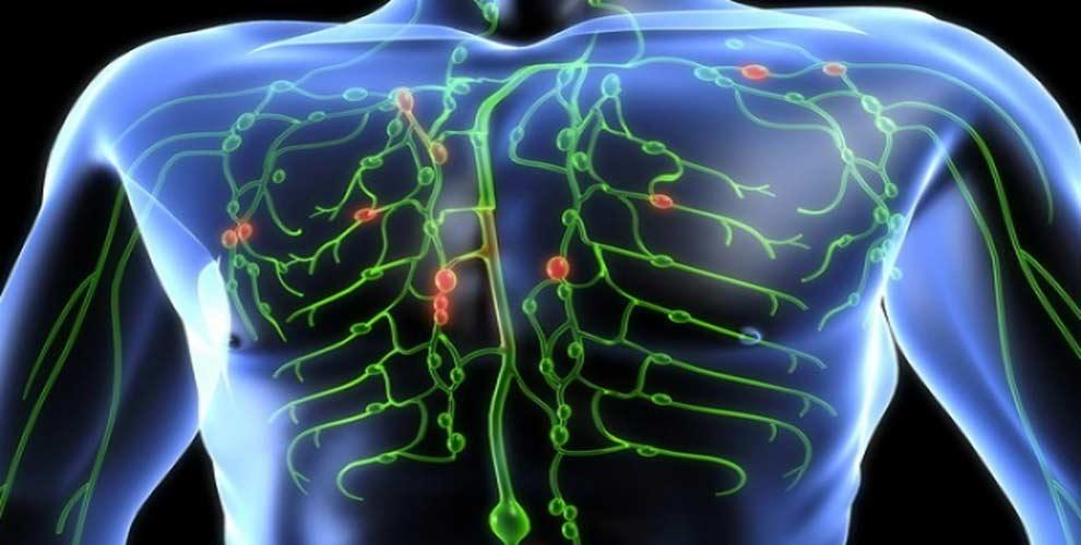 detoxikacia-lymfatickeho-systemu-1